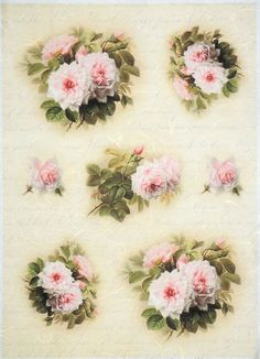 Rice Paper for Decoupage Decopatch Scrapbook Craft Sheet Vintage White Roses
