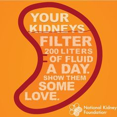show your kidneys some love