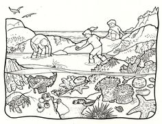 color pages ~ Environmental Science Coloring Pages Image Ideas Sheets Down By The Sea Karen Gillmore Art Color 45 Environmental Science Coloring Pages Image Ideas. Colouring Pages, Coloring Sheets, Pool Activities, Pool Colors, Forest Color, Ocean Unit, Rocky Shore, Tide Pools, Science Fair Projects