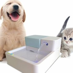 Green Spare No Cost At Any Cost Special Section Cat Water Fountain Pet For Cats And Dogs With Filter Automatic Flower