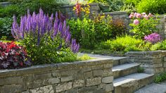 Front Yard Landscape Category For Cheap Landscaping Ideas Front ...