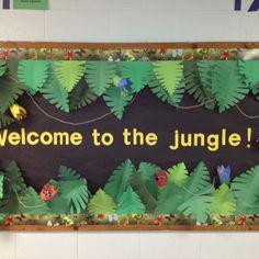Jungle classroom door safari theme new ideas Rainforest Classroom, Jungle Theme Classroom, Rainforest Theme, Classroom Themes, Rainforest Preschool, Rainforest Project, Classroom Banner, Jungle Bulletin Boards, Preschool Bulletin Boards