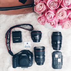 Which Lens Should I Buy First?   Jana Williams Photography