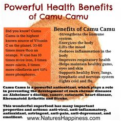 Camu Camu Powder health benefits