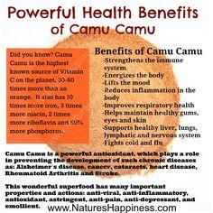 Camu Camu Powder health benefits