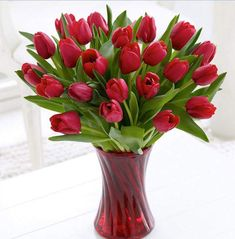 bó hóa tulip chúc mừng sinh nhật đẹp và ý nghĩa số 1
