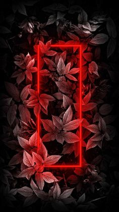 Neon Red Foliage Plants - IPhone Wallpapers