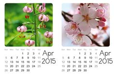 Displaying April-Monthly-PL-cldrs.jpg