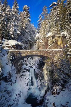 Winter at Christine Falls - Rainier National Park - Washington... definitely dragging Wil here SOON