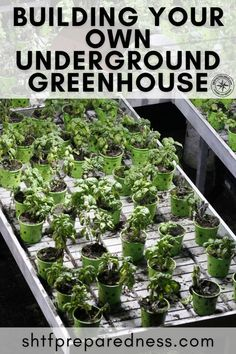 Having a greenhouse in your backyard is so last year! Why not build an underground greenhouse that will serve you when SHTF?! Greenhouses are brilliant for emergency preppers and people looking to become more self-sufficient, and when one correctly, it will save you a fortune! Take a look here for more details now. #greenhouse #undergroundgreenhouse #buildingagreenhouse #howtobuildagreenhouse
