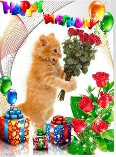 Shocked Kitty Birthday Image quote happy birthday birthday quotes birthday quotes and sayings birthday images cute birthday images Happy Birthday Wishes Images, Happy Birthday Flower, Birthday Card Sayings, Happy Birthday Pictures, Happy Birthday Funny, Cat Birthday, Happy Birthday Greetings, Birthday Quotes, Sister Birthday