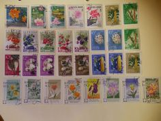 Russia Flowers Flora Plants Lot of 31 stamps Used (want)