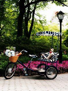 "Tory Burch custom tricycle.... Wonder if I can transform my pearl pink ""bi"" into a ""tri""???... hmmmm.... ;)"