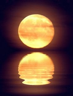 Good night, sleep tight, as the moon reflects its light and image over the water.