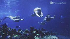Mako Mermaids - Season 2 Mermaid Gifs, Mermaid Names, Mermaid Art, H2o Mermaids, Fantasy Mermaids, Mermaids And Mermen, Mako Island Of Secrets, Professional Mermaid, Mermaid Ornament