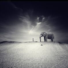 Somewhere in My Surreal Dreams by Luis Beltrán