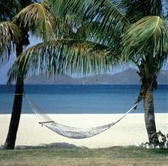 a hammock at Nisbit Plantation in Nevis, West Indies