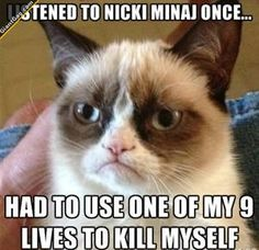 Listened To Nicky Minaj And Had Tu Use One Of My 9 Lifes To ...,  Click the link to view today's funniest pictures!