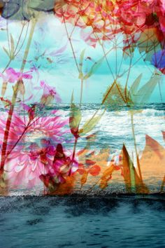 Flower Ocean Photography by ALAYA GADEH at ArtistRising.com