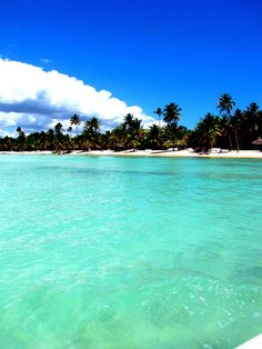 Saona Island, Dominican Republic - Explore the World with Travel Nerd Nici, one Country at a Time. http://TravelNerdNici.com