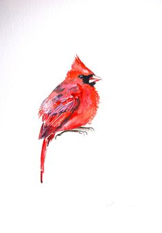 Watercolor Painting Original Art Cardinal Painting by WoodPigeon (gorgeous painting!)