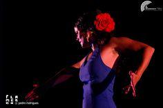 Artistas relacionados con Flamenco nau