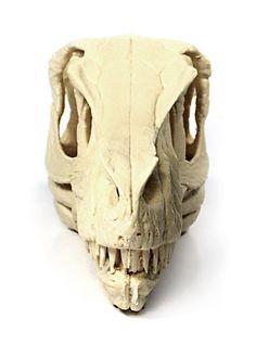 http://brantworks.com/resources/Velociraptor/Vm_skull/Kaiyodo_kit/V-Skull-parts-front-500.jpg