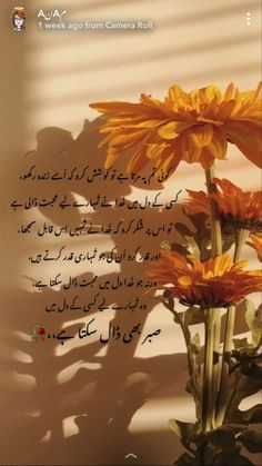 Poetry Quotes In Urdu, Best Urdu Poetry Images, Urdu Quotes, Qoutes, True Feelings Quotes, Reality Quotes, Urdu Thoughts, Good Thoughts, Post Poetry