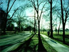 Visit the Village Trail System in Mountain Brook, AL by Nimrod Long and Associates