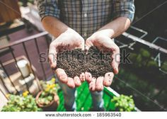 close up of hands holding soil on the balcony - stock photo BUY IT FROM $1 ON SHUTTERSTOCK