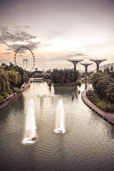 Ultimate list of 20 things to do and see in Singapore - Katie's Postcard Activities In Singapore, Places To Travel, Places To See, Singapore Travel, Singapore Vacation, Singapore City, Asia Travel, Croatia Travel, Hawaii Travel