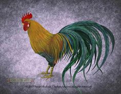 Video: Painting a Phoenix rooster - Chicken Art Blog