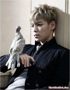 #TOP #BIGBANG my-secret-obsession