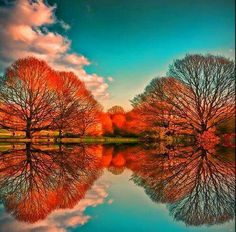 Beautiful Fall refections!!! Bebe'!!! Love a refections in a lake!!!