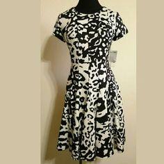 ✴Eliza J Dress New with tags Fit & Flare Animal print  **Final Price Eliza J Dresses Mini