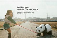 Página de erro do Flickr traz um panda teimoso, chegou a ver? ;) http://www.bluebus.com.br/pagina-de-erro-do-flickr-traz-um-panda-teimoso-chegou-a-ver/