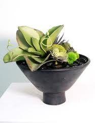 succulents floral arrangement -bouquets -flowers - Google Search
