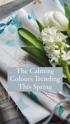 Calming Colors, Roman Blinds, Window Coverings, Color Trends, Colours, Curtains, Blinds Ideas, Spring, Soothing Colors