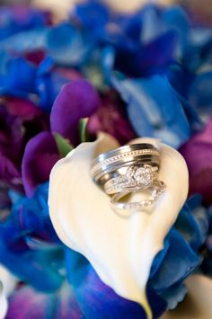 Nice shot of the wedding rings inside the brides boquet Wedding Dj, Wedding Engagement, Dream Wedding, Wedding Ideas, Engagement Rings, Wedding Ring Photography, Wedding Ring Pictures, Blue And Purple Flowers, Beautiful Wedding Rings