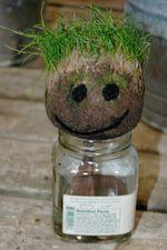 Kids Gardening: Grow your own Grass Head People