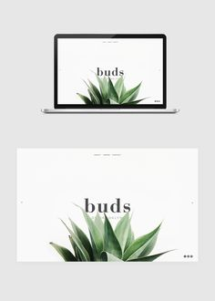 Buds of Brooklyn on Behance // ieee site ; grande photo au centre = site minimaliste ou tatouage/typo au centre