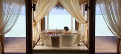 Anantara Resort is a brilliant luxury island holiday spa hotel located on the South Malé Atoll in Maldives. Anantara Maldives is perfect for honeymoons and. Maldives Resort, Resort Spa, Maldives Hotels, Maldives Vacation, Maldives Honeymoon, Palm Resort, Cities, Luxury Spa, Luxury Travel