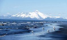 View from Homer Beach, Homer AK. Photo by Bill Cody