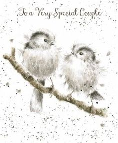 Wrendale Designs to a Very Special Couple Greetings Card Lovebirds Hannah Dale for sale online Watercolor Cards, Watercolor Illustration, Watercolor Paintings, Watercolour, Animal Paintings, Animal Drawings, Wrendale Designs, Vintage Birds, Love Birds