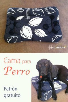 Dog Rooms, Ragnar, Border Collie, Dog Bed, Sewing Tutorials, Your Pet, Lunch Box, Quilts, Cats