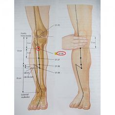 Health And Nutrition, Health Fitness, Sigil Magic, Acupuncture Points, Pressure Points, Chinese Medicine, Sciatica, Reflexology, For Your Health