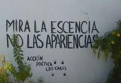 Mira la esencia  No las apariencias #Acción Poética Los Cabos #calle