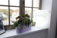 eko design bag Tbasket by TeraPlast and Pure design lamp by Slide design