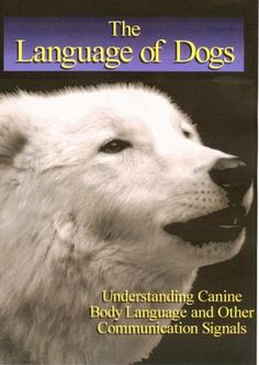 Language of Dogs Direct Book Service https://www.amazon.com/dp/1929242409/ref=cm_sw_r_pi_dp_x_eppcybBJ95C9X