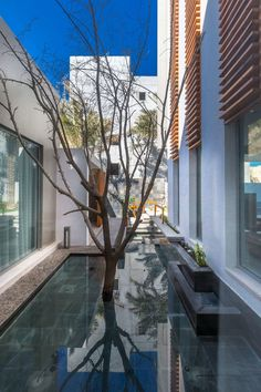 Amwaj Villa by Moriq Interiors and Design Consultants (4)